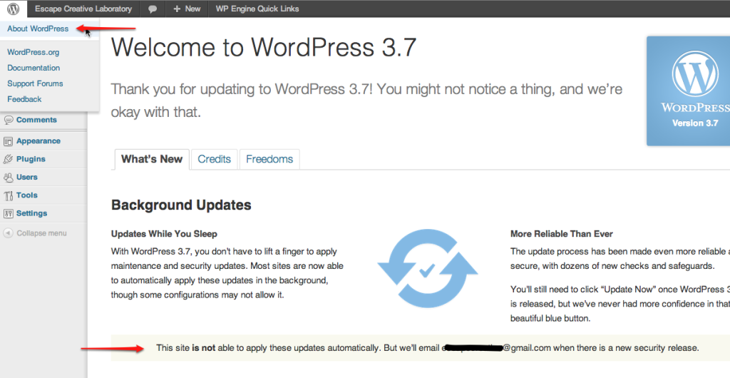 WordPress Background Updates Eligibility