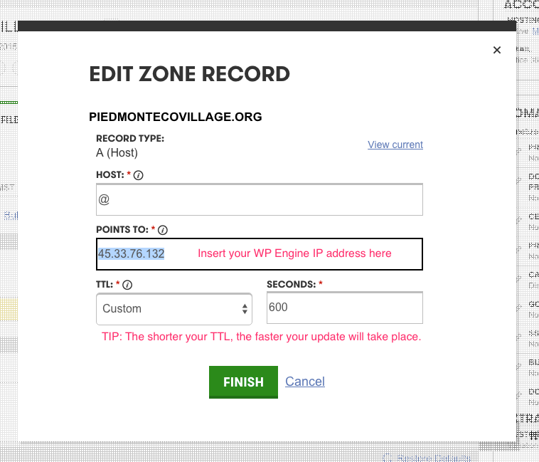 GoDaddy edit DNS zone record modal