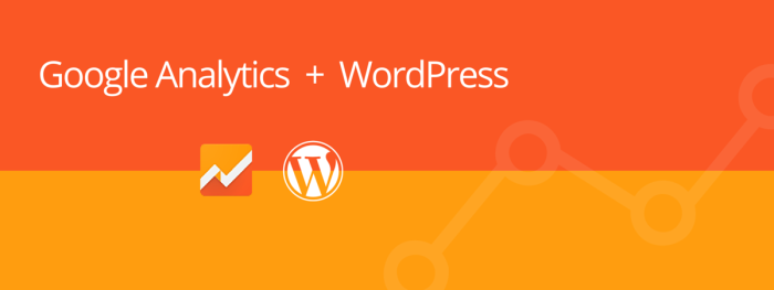 Google Analytics WordPress, How to Add