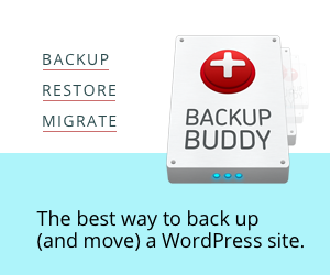WordPress BackupBuddy Plugin