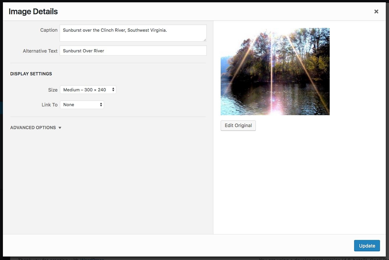 Editing the WordPress image widget