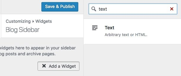 Search for WordPress text widget