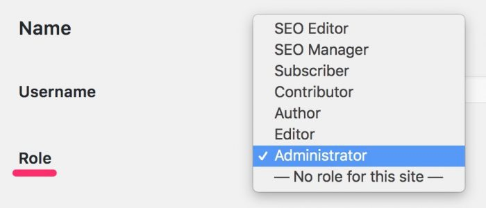 WordPress user role dropdown