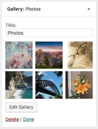 WordPress Customizer gallery widget example