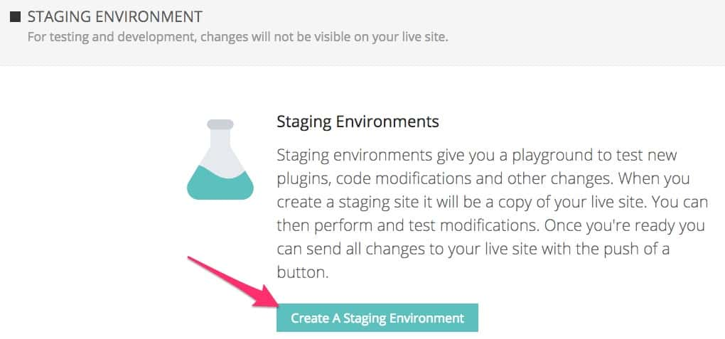 Kinsta hosting create a staging environment button