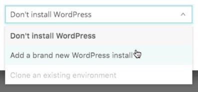 Kinsta Hosting WordPress install dropdown