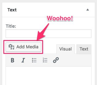 WordPress text widget add media button