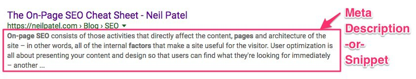 Google SERP example of snippet