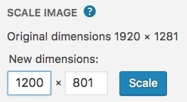 WordPress scale image options