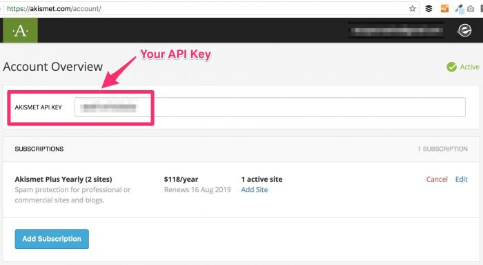 Akismet API key in your account